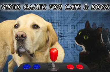 Arcade machines & games for cats and dogs