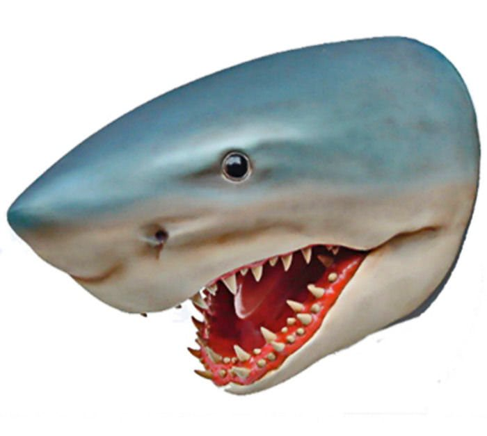 Shark Head Wall Mount Liberty Games
