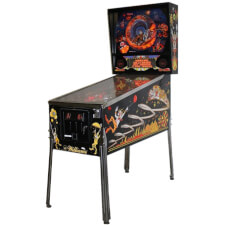 Hurricane Pinball Machine