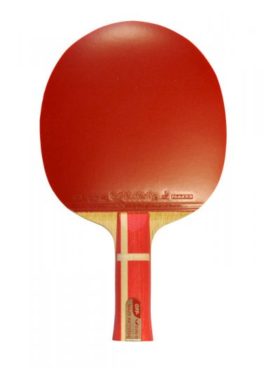 Butterfly Maze T-Tec Offensive with Bryce Speed Rubbers Table Tennis Bat