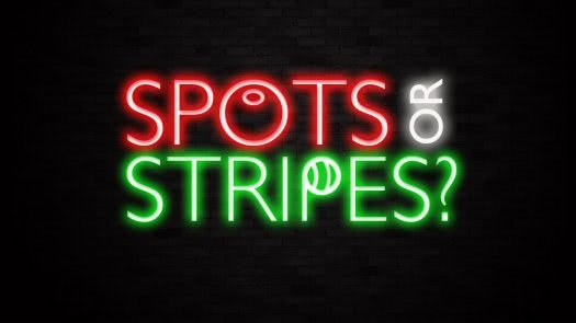 Spots Or Stripes Neon Sign