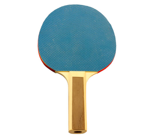 Tekscore Table Tennis Bat