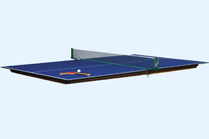 Optional table tennis top for the Eliminator pool table