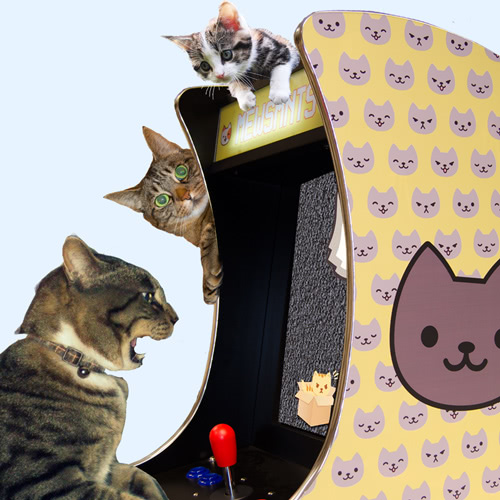 Three cats playing the Mewsmnts Rcade cats arcade machine