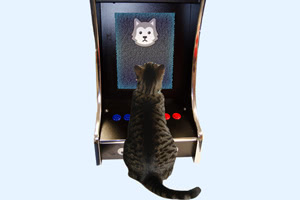 The Musemnts Rcade arcade machine for cats