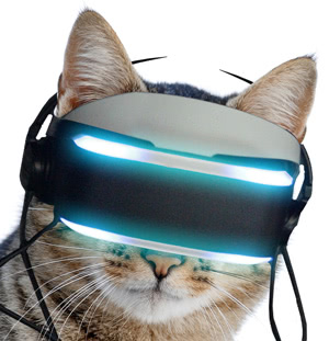 The Virtual Realiteh VR system for cats