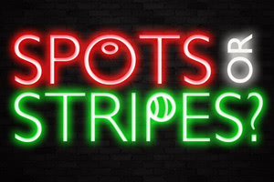 Spots or stripes neon bar light